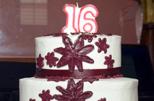 16th birthday party photography by Brad Ottosen, Houston Texas