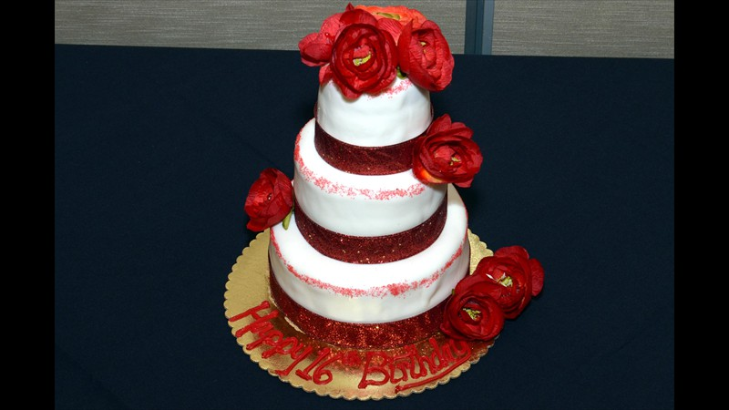 Maheen's 16th birthday cake
